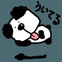 ポメラニアン風 いぬっこパンダ
