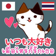 [LINEスタンプ] 猫 : いつも大好き タイ語日本語