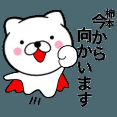 【柿本】が使う主婦が作ったデカ文字ネコ