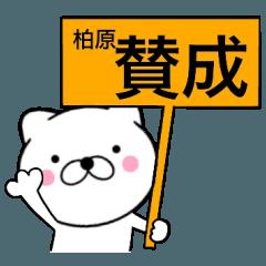 【梶原】が使う主婦が作ったデカ文字ネコ