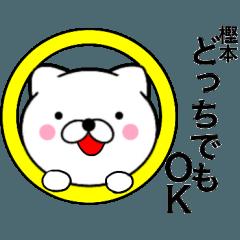 【樫本】が使う主婦が作ったデカ文字ネコ