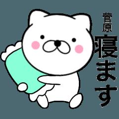 【菅原】が使う主婦が作ったデカ文字ネコ