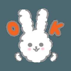 白いウサギ'ミルク'♡