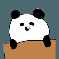 ハコパン 箱入りパンダ