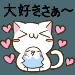 [LINEスタンプ] 山梨弁のねことインコ (1)