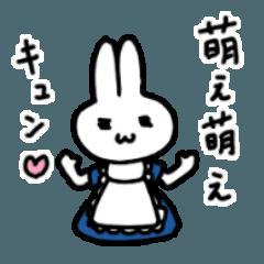 メイドウサギ