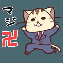 じょぶねこ (バラエティ編)