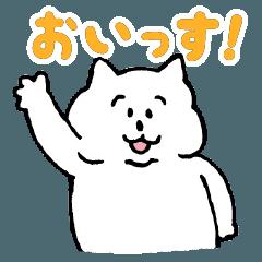 白ネコのふくすけ