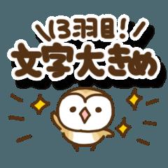 メンフクロウのまめふくちゃん13【文字大】