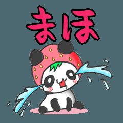 イチゴinまほパンダの日常会話(苗字/名前)