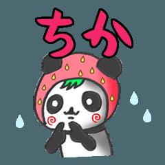 イチゴinちかパンダの日常会話(苗字/名前)