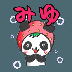 イチゴinみゆパンダの日常会話(苗字/名前)