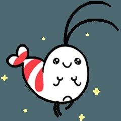 Shy Shrimp (English)