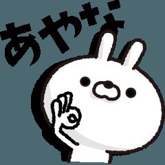 Carrots and rabbits [あやな]